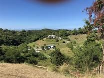 Lots and Land for Sale in Bo. Río Grande, Rincón , Puerto Rico $49,000
