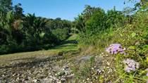 Homes for Sale in San Ignacio, Cayo $24,000