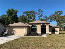 Homes for Sale in Spring Hill, Florida $217,500