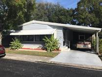 Homes for Sale in Caribbean Isles, Largo, Florida $49,900