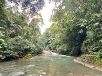 Farms and Acreages for Sale in Hatillo, Dominical, Puntarenas $799,000