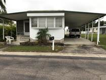 Homes for Sale in Honeymoon, Dunedin, Florida $35,000