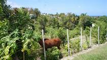 Lots and Land for Sale in Bo. Puntas, Puerto Rico $129,000
