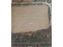 Lots and Land for Sale in Linden, Michigan $100,000