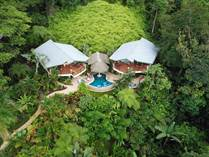 Commercial Real Estate for Sale in Escaleras , Dominical, Puntarenas $698,000