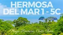 Condos for Sale in Playa Hermosa, Guanacaste $318,000