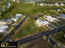 Lots and Land for Sale in BO PUENTE, Camuy, Puerto Rico $52,000