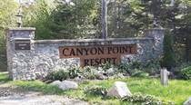 Homes for Sale in Canyon Point Road, Vaughan, Nova Scotia $45,000