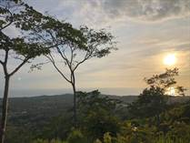 Lots and Land for Sale in Bahia Ballena, Puntarenas $240,000