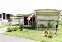 Homes for Sale in Holiday Mobile Home Park, Lakeland, Florida $9,995