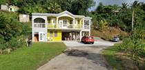 Homes for Sale in Bo. Jaguey, Aguada, Puerto Rico $245,000