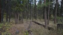 Lots and Land for Sale in Fintry, British Columbia $87,500