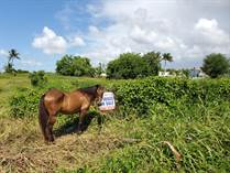 Lots and Land for Sale in Carr. 467, Aguadilla, Puerto Rico $50,875