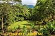 Lots and Land for Sale in Tres Rios, Puntarenas $75,000