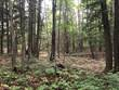 Recreational Land for Sale in Unnamed Area, Marmora, Ontario $299,000