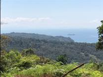 Farms and Acreages for Sale in Uvita, Puntarenas $579,000