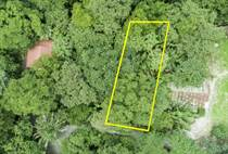 Lots and Land for Sale in Nosara, Guanacaste $84,000