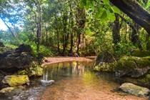 Farms and Acreages for Sale in Toledo, Belize $550,000