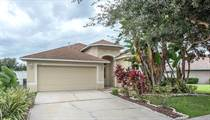 Homes for Sale in Panther Trace, Riverview, Florida $238,800