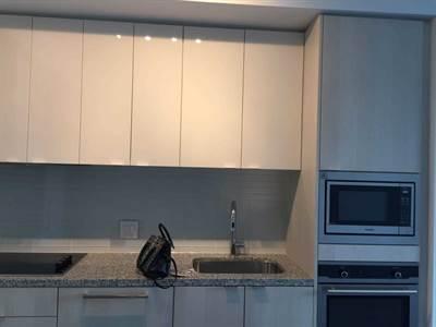 115 Blue Jays Way, Suite 1210, Toronto, Ontario