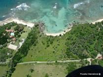 Homes for Sale in Orchid Bay, Cabrera, Maria Trinidad Sanchez $8,500,000