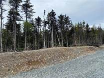 Lots and Land for Sale in Pouch Cove, Newfoundland and Labrador $80,000