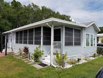 Homes for Sale in Ruskin, Florida $25,900