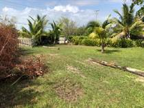 Lots and Land for Sale in San Pedro, Ambergris Caye, Belize $65,000