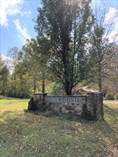 Lots and Land for Sale in Jamestown, Kentucky $10,000