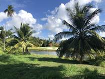 Lots and Land for Sale in Bahia Beach Resort, Puerto Rico $1,290,000