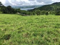 Farms and Acreages for Sale in Arenal, Guanacaste $90,000