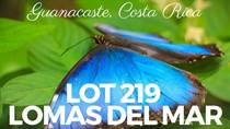 Lots and Land for Sale in Matapalo Beach , Guanacaste $126,000