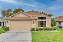 Homes for Sale in Spring Hill, Florida $229,900