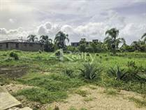 Lots and Land for Sale in Belmopan, Cayo $29,500