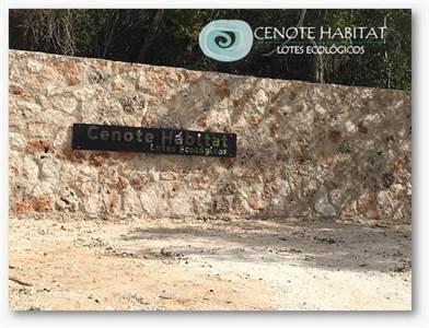 Cenote Habitat, Ecological Lots, Tres Marias  , Lot H 25, Puerto Morelos, Quintana Roo