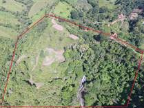 Farms and Acreages for Sale in San Isidro de El General, San José $390,000