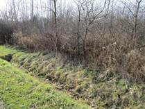 Lots and Land for Sale in Ohio, Hartsgrove, Ohio $35,000