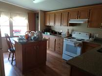Homes for Sale in Sundance Mobile Home Park, Zephyrhills, Florida $56,000