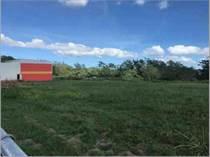 Commercial Real Estate for Sale in Bo. Miradero, Cabo Rojo, Puerto Rico $880,000