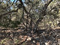 Lots and Land for Sale in The Crossing At Spring Creek, Spring Branch, Texas $59,900