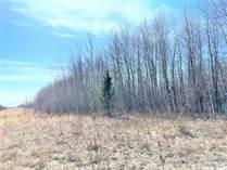 Lots and Land for Sale in Saskatchewan, Hudson Bay Rm No. 394, Saskatchewan $225,000
