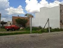 Homes for Sale in La Palmita, San Miguel de Allende, Guanajuato $66,000