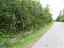 Lots and Land for Sale in Woodlawn, Ottawa, Ontario $164,500