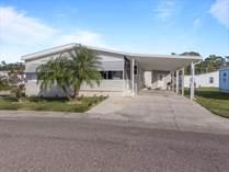 Homes for Sale in Forest Lake Estates, Zephyrhills, Florida $53,000