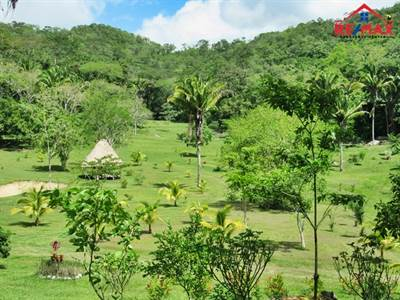 150 ACRES OF FERTILE LAND with TWO TILAPIA PONDS and NATURAL SPRINGS - near SAN IGNACIO TOWN
