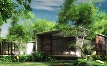 Homes for Sale in Tulum, Quintana Roo $99,000