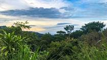 Homes for Sale in Ballena, Puntarenas $84,000