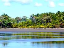 Lots and Land for Sale in Esterillos, Puntarenas $45,000