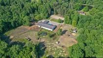 Homes for Sale in Clarkston, Michigan $1,250,000