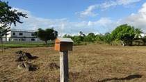 Homes for Sale in Cohune Walk, Belmopan, Cayo $99,500